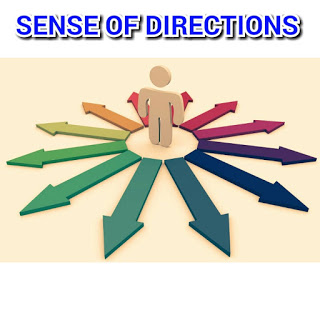 7 Points Sense Of Direction To Achieve Success