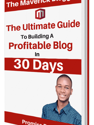 FREE E-BOOK: The Ultimate Guide To Building A Profitable Blog In 30 Days By Promise Excel