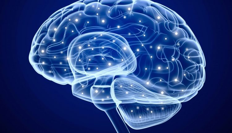 How to Keep a Healthy Brain?