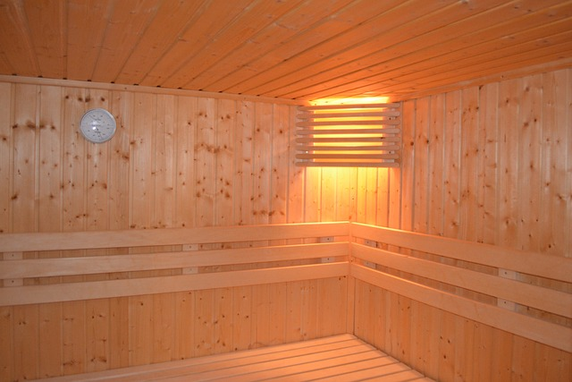 Build Your Own Sauna Now ! Spending Less Than $100