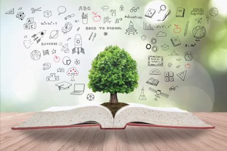 Educational Environment Tree